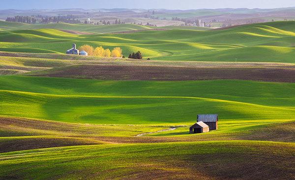 Lác đác lắm mới thấy những ngôi nhà nhỏ hoặc nông trại trên vùng đất rộng mênh mông này.