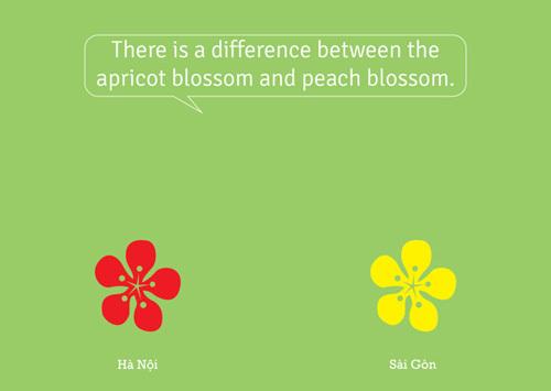 Tuy có hình dáng khá giống nhau, nhưng ở Hà Nội có hoa đào đỏ thắm còn ở Sài Gòn lại có hoa mai vàng.