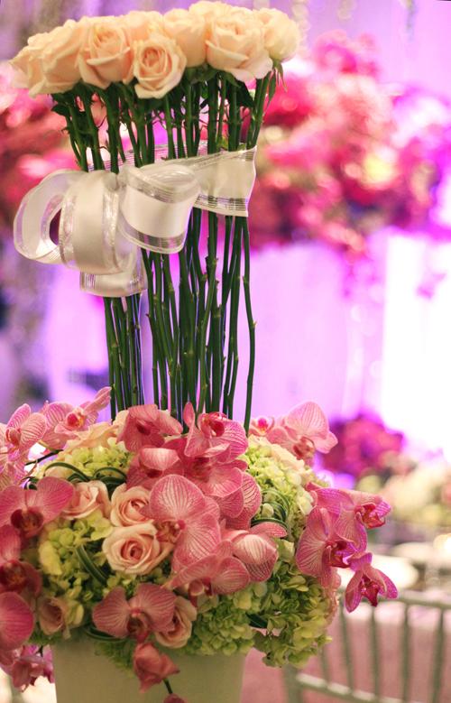 Sắc màu hoa năm nay cũng thiên nhiều về sự dịu dàng, nhiều loại hoa hồng màu nhạt được ưa chuộng.