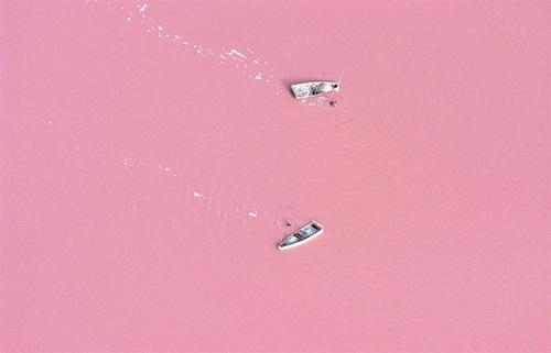 Hồ Retba với diện tích 3km2 ở Senegal nổi bật với màu sắc lạ thường và độc đáo. Tùy vào các thời điểm trong ngày, nước hồ sẽ chuyển dần từ màu tím nhạt sang màu hồng ngọt ngào. Ảnh: buzzfeed
