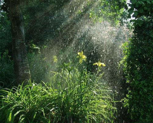 rain15-757424-1370259910_500x0.jpg