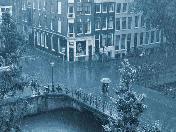 Những bức ảnh chụp trời mưa rất nghệ thuật của nhiều tác giả khác nhau được các cư dân mạng xã hội thích thú truyền tay nhau.