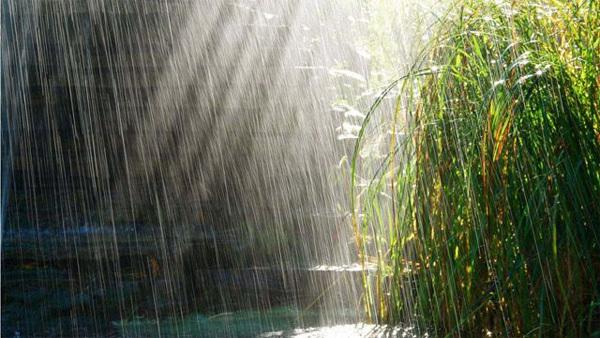rain4-565326-1370259909_600x0.jpg