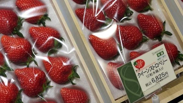 Một hộp dâu tây Nữ hoàng gồm 12 quả có giá 6.825 yên (hơn 1,4 triệu đồng).
