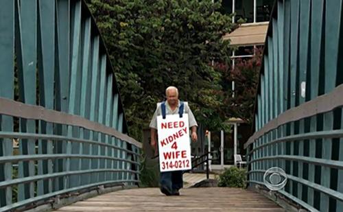 Ông Larry kiên trì đeo bảng đi tìm người phù hợp để hiến thận cứu vợ. Ảnh: Nydailynews
