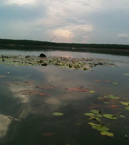 Hồ Cần Nôm, nơi 3 người trong gia đình 3 đời gặp nạn chết đuối.