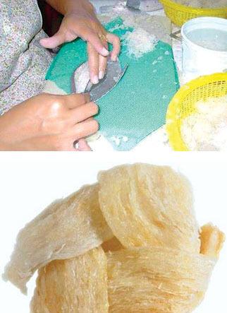 Tiếp đến là bắt đầu gia công, làm thành bánh miếng tổ yến (ảnh trên trái)