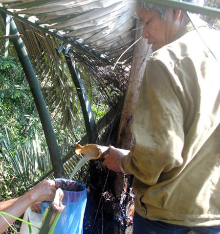 Ông Hy lấy rượu đoác trong rừng sâu để làm ra rượu nhất dạ ngũ giao.