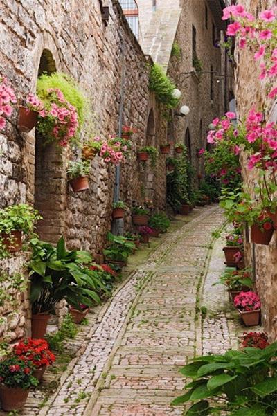 Con hẻm lãng mạn tràn ngập những chậu hoa nhỏ xinh trải dài theo lối đi nằm ở làng Giverny thuộc miền bắc nước Pháp. Bất kỳ du khách nào đặt chân tới đây chắc sẽ không thể nén lòng