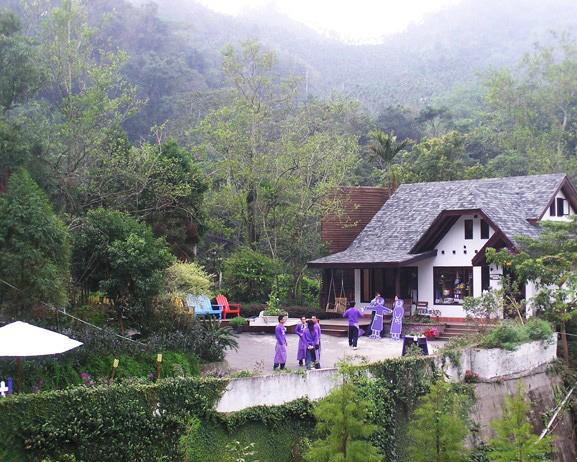 Năm 2001, một cánh rừng mang tên Rừng hoa oải hương đã được trồng tại Đài Trung. Cùng với hoa oải hương là rất nhiều loài hoa khác được trồng và tất cả đều mang sắc màu tím.