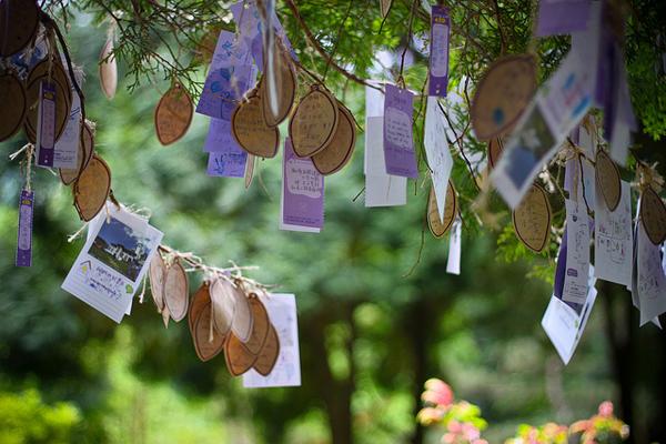 Rừng hoa oải hương mang khung cảnh lãng mạn, hợp với các bạn trẻ và các gia đình có con nhỏ.