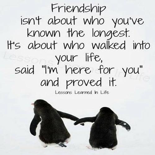 9-friendship-1377137300.jpg