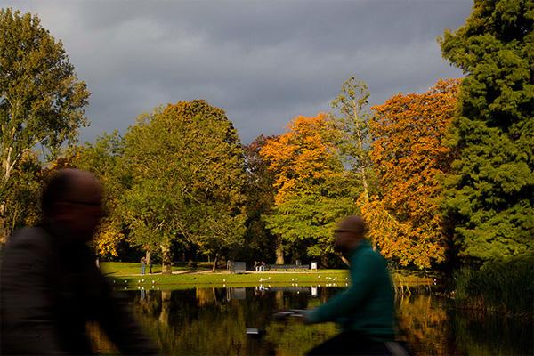 autumn10-1377246817.jpg