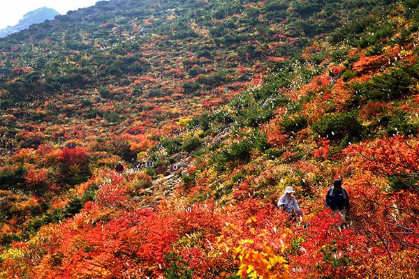 autumn3-1377246816.jpg