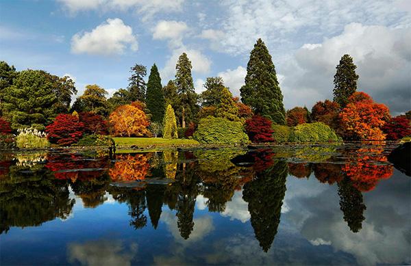 autumn9-1377246817.jpg
