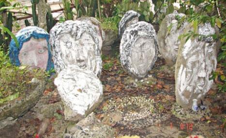 Nhiều đầu người được trồng trong vườn nhà ông Chứng.