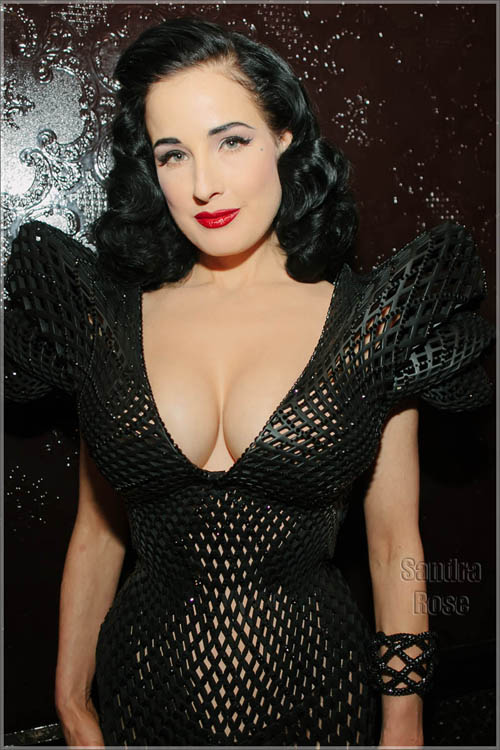 Dita-Von-Teese-fishnet-dress-S-4724-6573