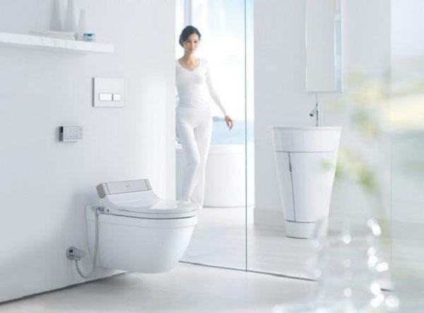 toilet10-3257-1381198069.jpg
