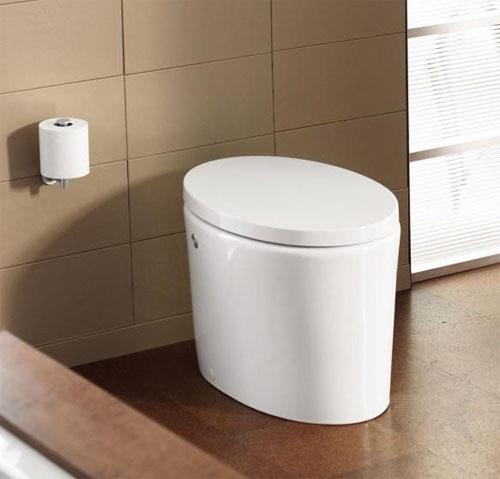 toilet8-2814-1381198069.jpg