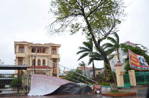 Gió bão làm đổ một số biển quảng cáo và cây xanh trên địa bàn TP Móng Cái.