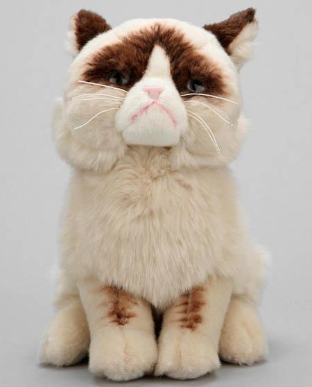 Hãy thu nạp thêm bé mèo bông này để giấc ngủ ngon hơn.