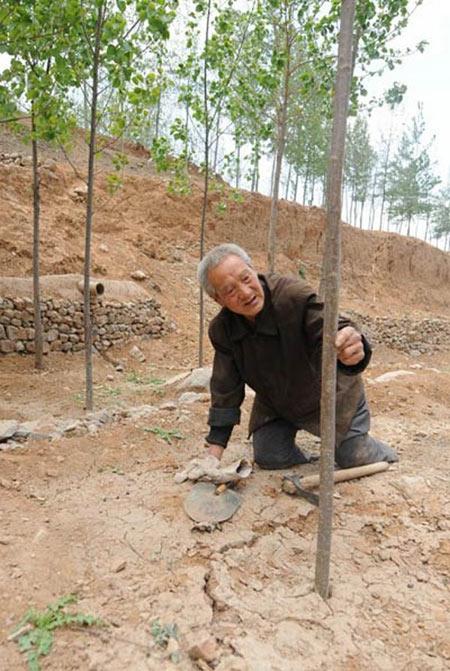 8-Ma-Sanxiao-5388-1386212168.jpg