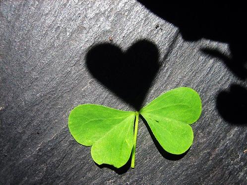 heart1-1392-1387502541.jpg