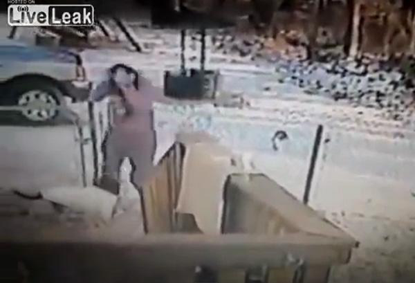 Trêu phải mèo dữ, cô gái bị tấn công mức phải bỏ chạy