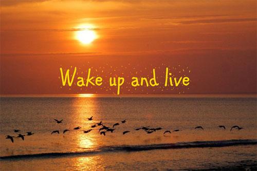 wakeup-3241-1388490864.jpg