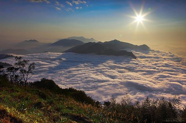 Alishan-National-Scenic-Are-2610-1388635