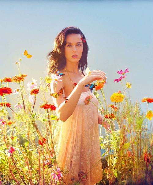 Katy-Perry-2-6018-1389087768.jpg