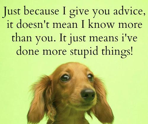 9-more-stupid-things-5782-1389148773.jpg