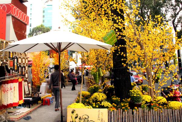 Đường mai phố ông đồ ở thành phố Hồ Chí Minh