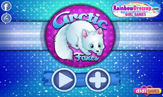 Arctic1-4069-1392621646.jpg
