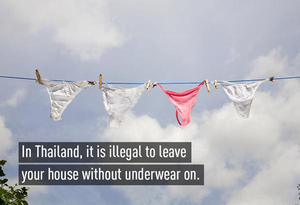 3-Underwear-1601-1392895759.jpg