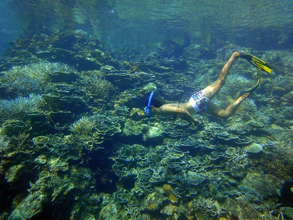 Snorkeling-Butang-Island.jpg