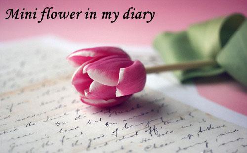 diary-7135-1393406446.jpg