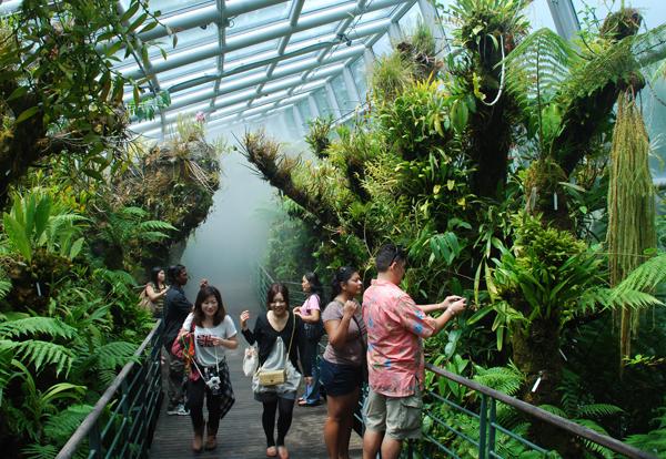 Botanic-Gardens-3420-1394098176.jpg