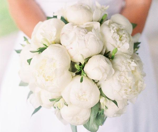 chụp ảnh cưới vũng tàu hoa cuoi