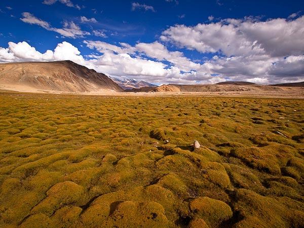 Ladakh-India-5607-1394444734.jpg