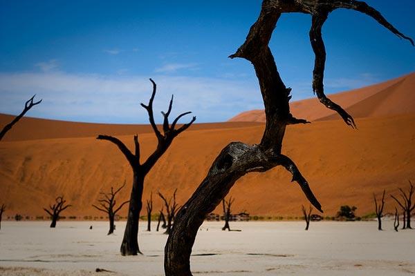 Sossusvlei-red-dunes-Namibi-7821-1394444