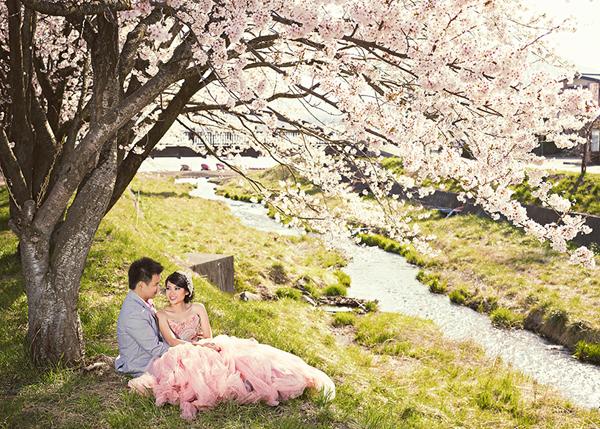 Ảnh cưới đẹp: Cô dâu chú rể dưới tán hoa
