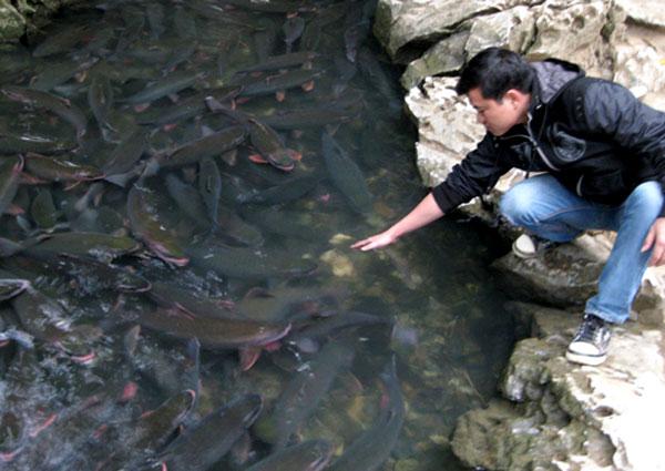 Rong chơi suối cá thần ngày cuối tuần - hình ảnh 2