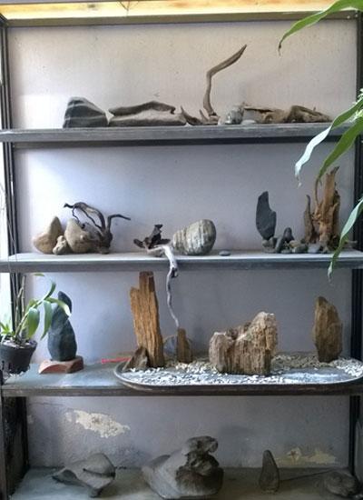 Nam đạo diễn còn có thú sưu tập đá thiên nhiên.