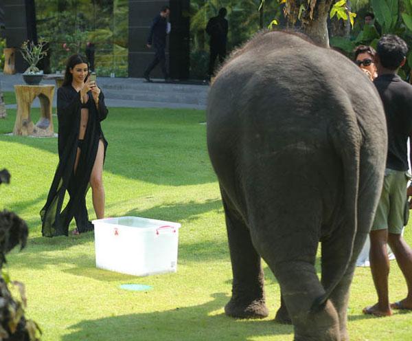 Kim-Kardashian6-4879-1396409422.jpg