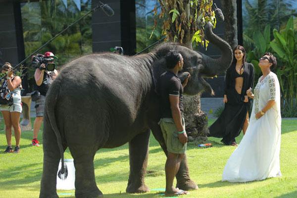 Kim-Kardashian7-7138-1396409422.jpg