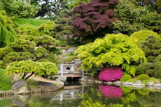 brooklyn-botanical-garden-4281-139640838