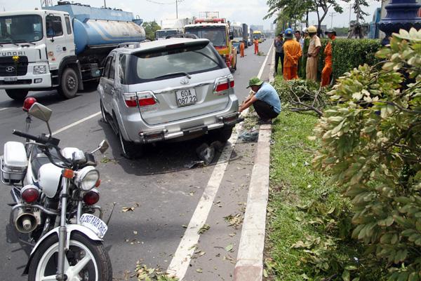 2 công nhân chăm sóc cây xanh Thái Kim Long (khoảng 42 tuổi, ngụ quận Phú Nhuận) và Lê Văn Thể (44 tuổi, ngụ tỉnh Bình Dương) bị thương.
