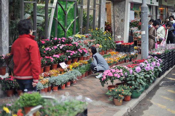 Flower-Market-02.jpg