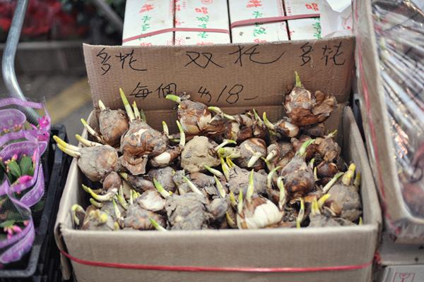 Flower-Market-04.jpg